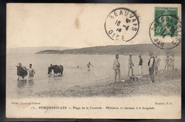 PORQUEROLLES 83 - Plage De La Courtade - Militaires Et Chevaux à La Baignade - Porquerolles