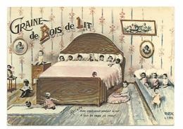 SERIE BEBE / GRAINE DE BOIS DE LIT  ANNEE 1960/70 CARTE ECRITE - Voir Detail Annonce - Humor