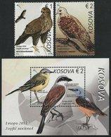 "KOSOVO /KOSOVA REPUBLIC -EUROPA 2019 -NATIONAL BIRDS.-""AVES -BIRDS -VÖGEL -OISEAUX""- SERIE + HOJITA BLOQUE - 2019"