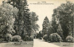 CPA - VITTEL - UNE GRANDE ALLEE VERS LA ROSERAIE DU PARC - Vittel Contrexeville