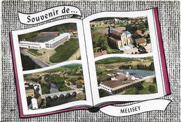 ~  JP  ~  70  ~  SOUVENIR De MELISEY   ~  Multivues  ~ - Francia