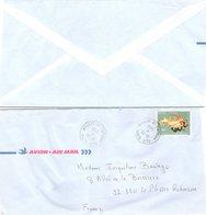WALLIS ET FUTUNA  - COVER AIR MAIL Yv N° 328  - 30.10.1985 /1 - Covers & Documents