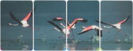 SOUTH AFRICA A-564 Chip MTN - Animal, Bird, Flamingo - 4 Pieces - Used - Südafrika