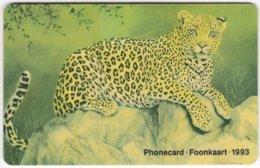 SOUTH AFRICA A-606 Chip Telkom - Animal, Cat, Leopard - Used - Südafrika