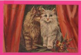 CPA (Réf: Z 2687) (ANIMAUX CHAT) Beaux Chats - Katzen