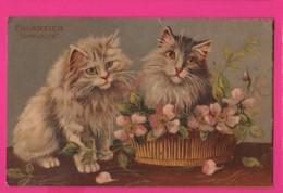 CPA (Réf: Z 2688) (ANIMAUX CHAT) Beaux Chats - Katzen