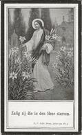 DP. MARIA MEEUWS ° COOLSCAMP 1881- + ARDOYE 1923 - Religion & Esotérisme