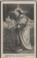 DP. GERMANA WEYN ° ST PAUWELS 1902- + 1921 - Religion & Esotérisme
