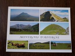 L21/1333 LES MONTAGNES D'AUVERGNE - Multivues - France