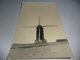 Steenvoorde Molen-moulin Fotokaart-photo-carte - Steenvoorde