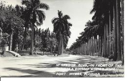 McGregor Blvd In Front Of The Thomas Edison Winter Home, Fort Myers, Florida (12843) - Fort Myers