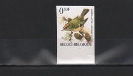 BUZIN / TIMBRE NON DENTELE / NUMERO  104  AU VERSO / COB 2424 / ROITELET HUPPE - 1985-.. Vögel (Buzin)