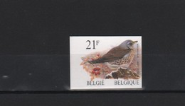 BUZIN / TIMBRE NON DENTELE / NUMERO  335  AU VERSO / COB 2792 / GRIVE LITORNE - 1985-.. Vögel (Buzin)