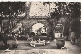 Carte Postale. France. Saint-Paul. La Colombe D'or. - Hotels & Restaurants