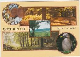HEIST-OP-DEN-BERG-GROETEN UIT-MEERZICHT-VERZONDEN KAART-1990-RENE VERTOMMEN-ZIE DE 2 SCANS-MOOI! ! ! - Heist-op-den-Berg