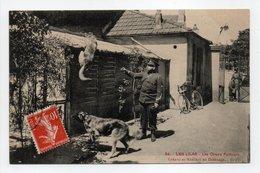 - CPA LES LILAS (93) - Les Chiens Policiers - Cyrano Et Marceau Au Dressage (belle Animation) - Edition G. F. N° 54 - - Les Lilas