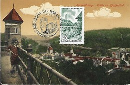 Luxembourg  -  7.4.1990  -  Luxembourg  Vallée De Pfaffenthal - Edit.Nic Harles ,Luxembg  2 Scans - Tarjetas Máxima