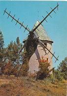 Vendee, Jard Sur Mer  Moulin De Jard - France