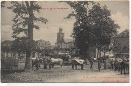 64 NAY Le Marcadieu Et L'Eglise - France