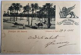 V 58014 Libia - Tripoli - Principio Del Deserto - Campagna Di Tripoli ( 1901 ) - Libyen