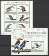 UC059 2009 UNION DES COMORES FAUNA BIRDS LES MARTINS-PECHEUR 1KB+1BL MNH - Oiseaux