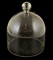 Nagy Méretű, üveg Sajtbúra. D: 19 Cm, M:  25 Cm - Verre & Cristal