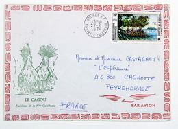 Enveloppe Le Cagou Emblème Nelle Calédonie, Noumée 1974 --> Peyrehorade, Affr. 26 YT Pa 149 Paysages Cote Ouest - Nueva Caledonia