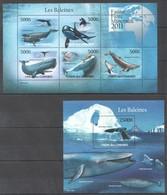 UC211 2011 UNION DES COMORES MARINE LIFE WHALES LES BALEINES 1KB+1BL MNH - Whales