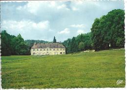 CIREY LES BELLEVAUX - Vue Générale Du Château - Francia