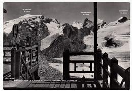 STELVIO DAL RIFUGIO MONTE LIVRIO - IL GRUPPO DELL'ORTLES - SONDRIO - 1952 - Sondrio