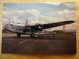 TMA / TRANS MEDITERRANEAN AIRLINES   AVRO 685 YORK   OD-ADL - 1946-....: Era Moderna
