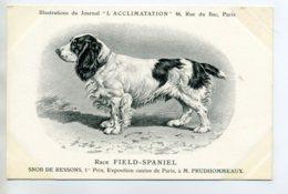 CHIENS 327 Bis  Chien Chasse Field Spaniel  1904 Journal L'Acclimatation - Chiens