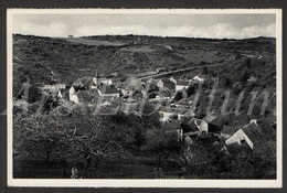 Postcard / CPA / Sosoye / Panorama / Nels / Edit. Ruth, Epicerie, Sosoye / 1958 / 2 Scans - Anhée
