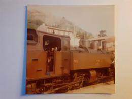 Locomotive Mallet 414 En Chauffe à Tournon (07) - Trains