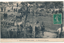 CHATILLON SUR LOIRE - Le Marché Aux Chevaux - Chatillon Sur Loire
