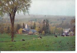 Carte Postale Timbrée - Scène Sur La Rivière St-François à Richmond-en-Bas, Québec (12957) - Quebec