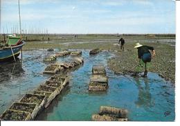 GIRONDE-Bassin D'Arcachon Parcs A Huitres......MB - Arcachon