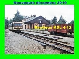 AL 623 - Autorail CFD En Gare - PRUNIERS EN SOLOGNE - Loir Et Cher - BA - France