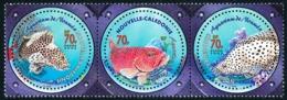NOUV.-CALEDONIE 2003 - Yv. 890 à 892 ** Faciale= 1,76 EUR - Poissons Loches. Aquarium (3 Val. Se Tenant)  ..Réf.NCE25542 - New Caledonia