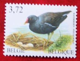 3,72 Euro Bird Vogel Oiseau Pajaro Buzin OBC N° 3212 (Mi 3261) 2003 POSTFRIS MNH ** BELGIE BELGIEN / BELGIUM - Ungebraucht