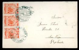 PARAGUAY. 1905. To Bolivia, La Paz. V. Nice. - Paraguay