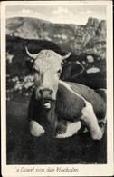 Cp Kuh, Das Liserl Von Der Hochalm - Non Classés