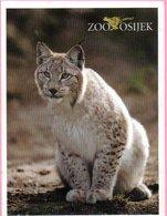 Ticket / Postcard - ZOO Garden - Lynx, Osijek, Croatia - Tickets - Entradas