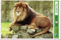 Ticket / Postcard - ZOO Garden - Panthera Leo - Lion, Osijek, Croatia - Tickets - Entradas
