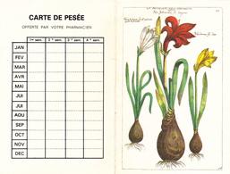 Calendrier De Poche 1993 - Calendriers