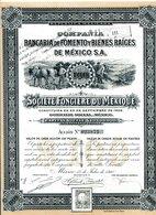 Companía BANCARIA De FOMENTO Y BIENES RAÍCES De MÉXICO S.A. - Shareholdings