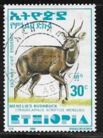 Ethiopia Scott # 1549D Used Bushbuck, 2000 - Ethiopia