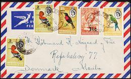 1962. 3½ C/4 D + Birds 2 Ex 2 D, 2½ D, 5 D. MOLEPOLOLE 6 MAY 62. To Denmark. (Michel 156+) - JF304790 - Bechuanaland (...-1966)