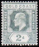 1904-1913. GOLD COAST. Edward VII. 2 D.  (MICHEL 50) - JF319221 - Costa D'Oro (...-1957)