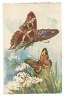 Belle Carte Aquarellée Papillon Illustrateur à Identifier -9 /14 Cm Ed Ballerini Firenze Florence - Insectos